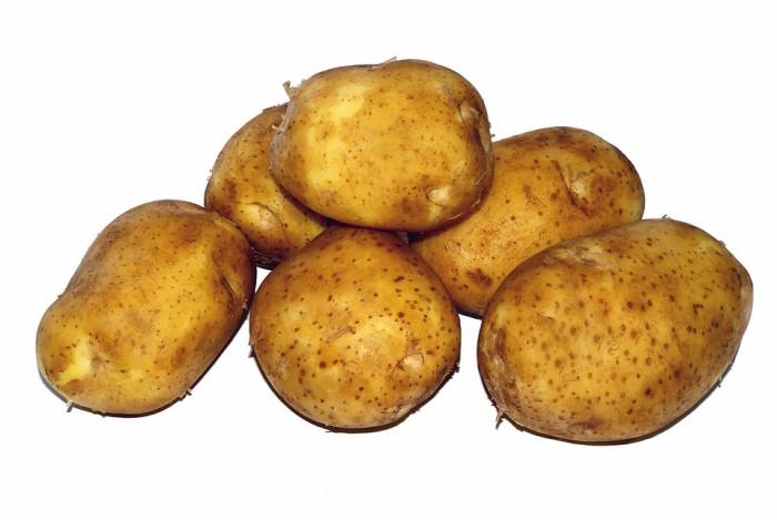 Ziemniaki Satina eko od p. Iskry