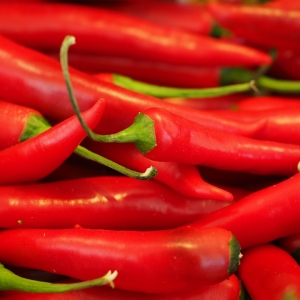 Papryka chili od p. Iskry