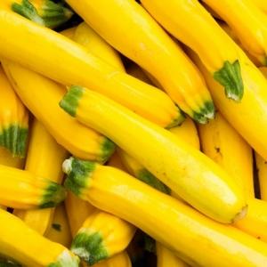 Cukinia żółta (kabaczek) Eko od Czaji