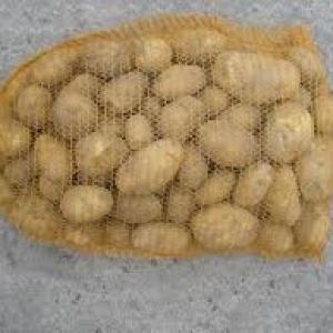 Ziemniaki Gwiazda młode 10kg EKO od p. Adamczyka