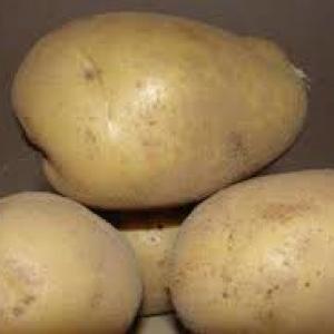 Ziemniaki   Denar Eko od p. Laska