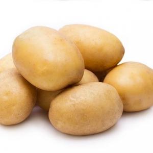 Ziemniaki ekologiczne Owacja od p. Bednarza