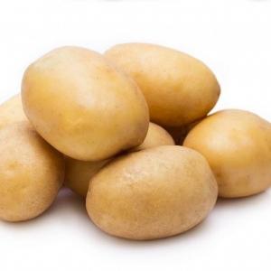 Ziemniaki  Lord od p. Czaja 10kg