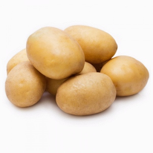 Młode ziemniaki Tajfun od p. Ziółkowskiego