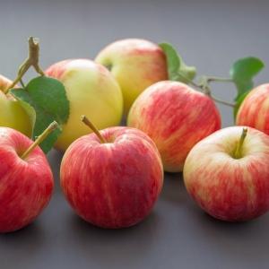 Jabłka czerwone  eko od p. Iskry